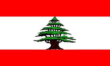 sujets du bac de français 2013 liban s es L