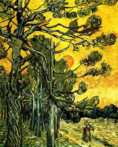 le pin des landes théophile gautier