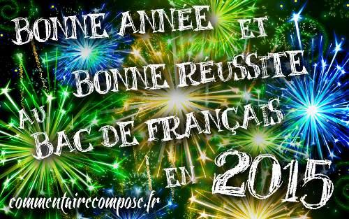bac français 2015