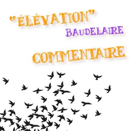 élévation Baudelaire Sélever Vers Lidéal