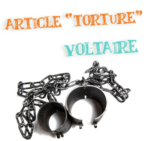 voltaire article torture