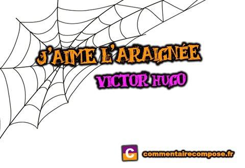 j'aime l'araignée victor hugo